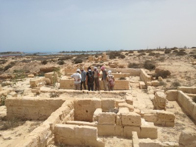 Mission to Egypt (Alexandria, the Mediterranean Coast and the Delta): second topographical survey of the sites related to the Late Antique Period